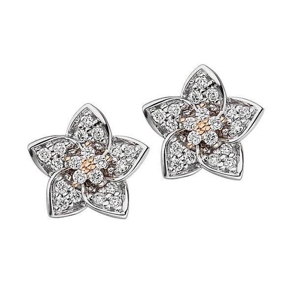 Diamant Ohrstecker Blüte  aus 585 Weißgold/Rotgold