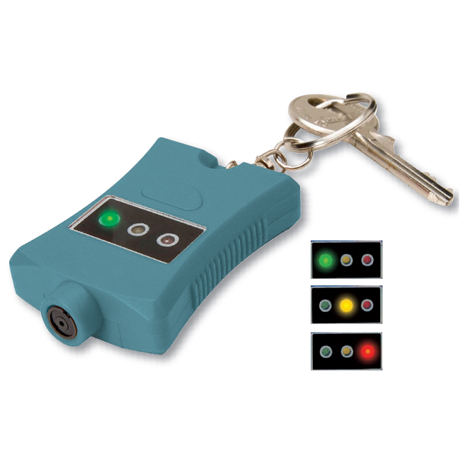 Batavia Car Paint tester for recording paint thickness