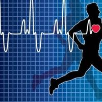 Trainen op hartslag