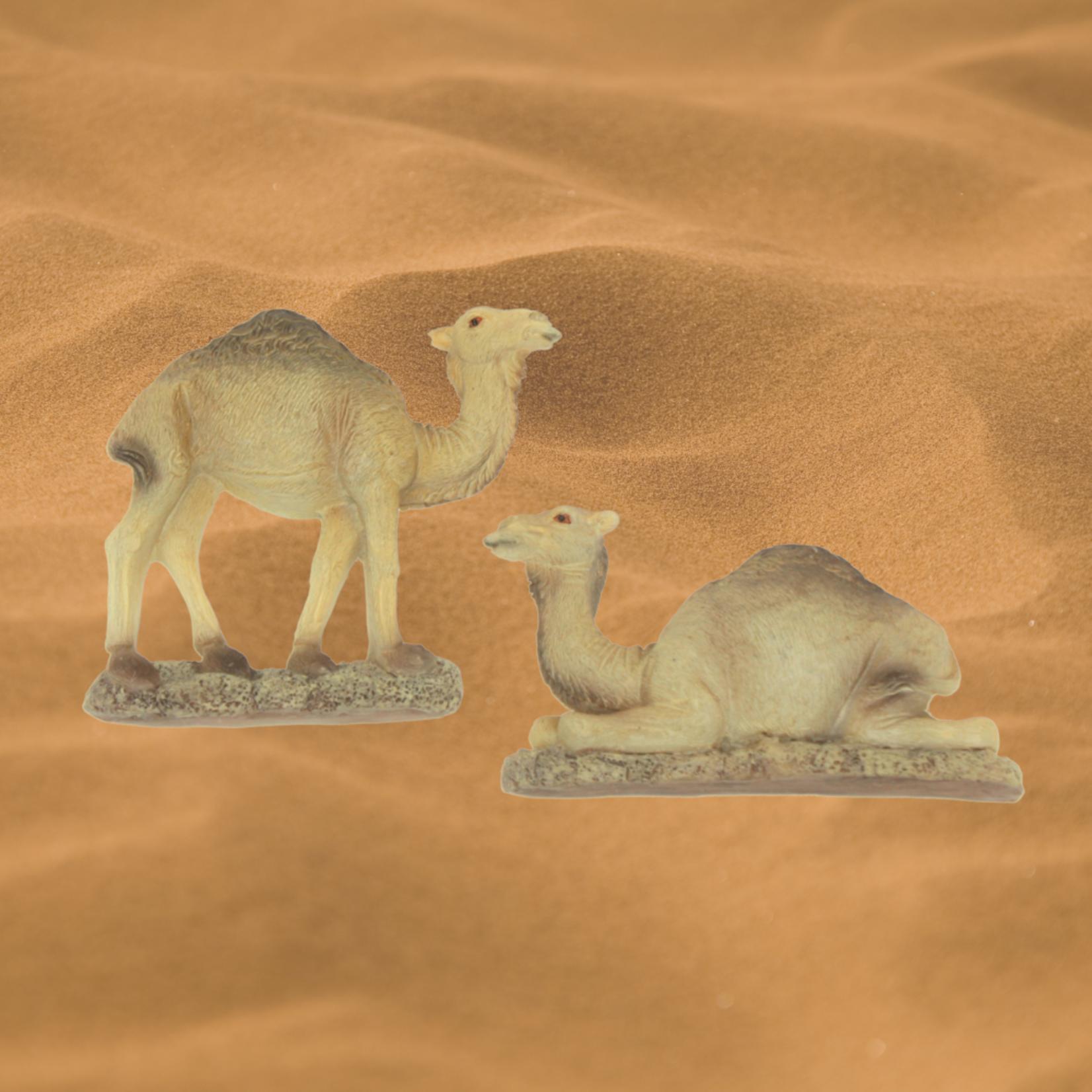 Magnet Kamel
