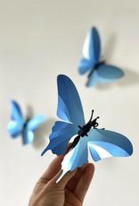 Paper Butterflies / Blue