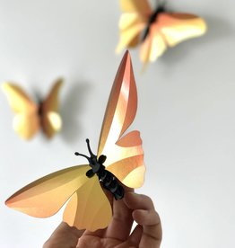 Paper Butterflies / Orange