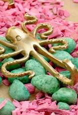 Jashaak / Octopus