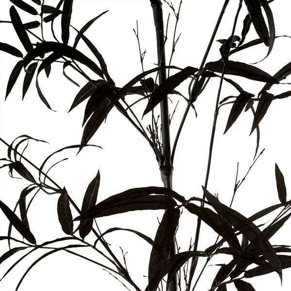 Artificial Plant / Bamboo
