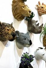 Wall Vase / Giraffe