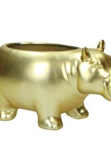 Gold ceramic hippo planter