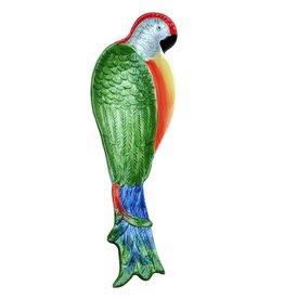 Papegaai schaal