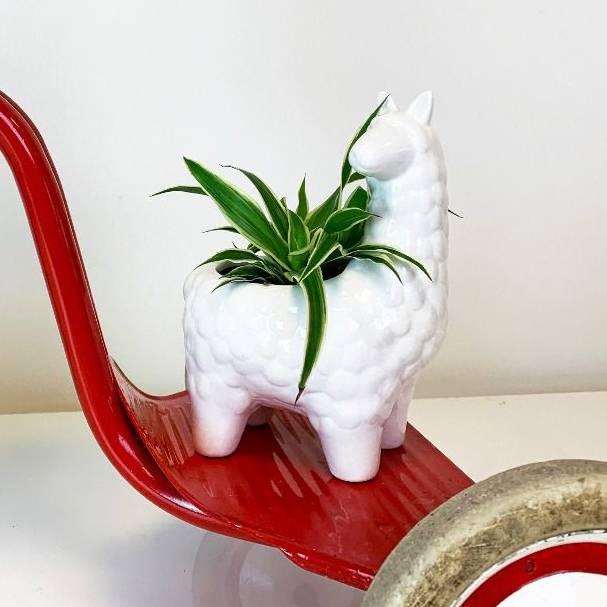 Alpaca plantenpotje van wit keramiek