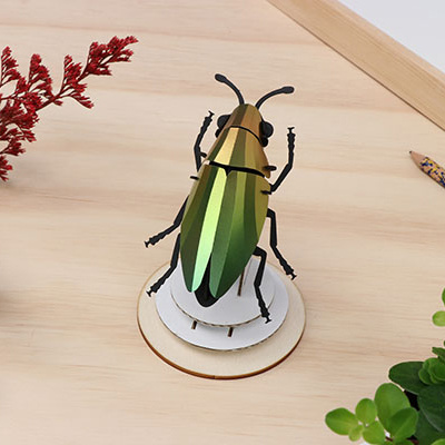 Mango green paper jewel beetle assembly kit