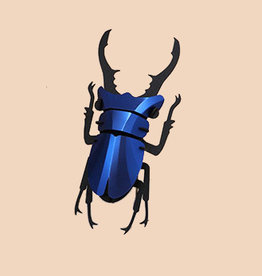 Paper Stag Beetle / Blue