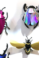 Rainbow effect paper scarab beetle assemble kit