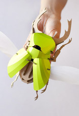 Paper Beetle / Stag / Lime