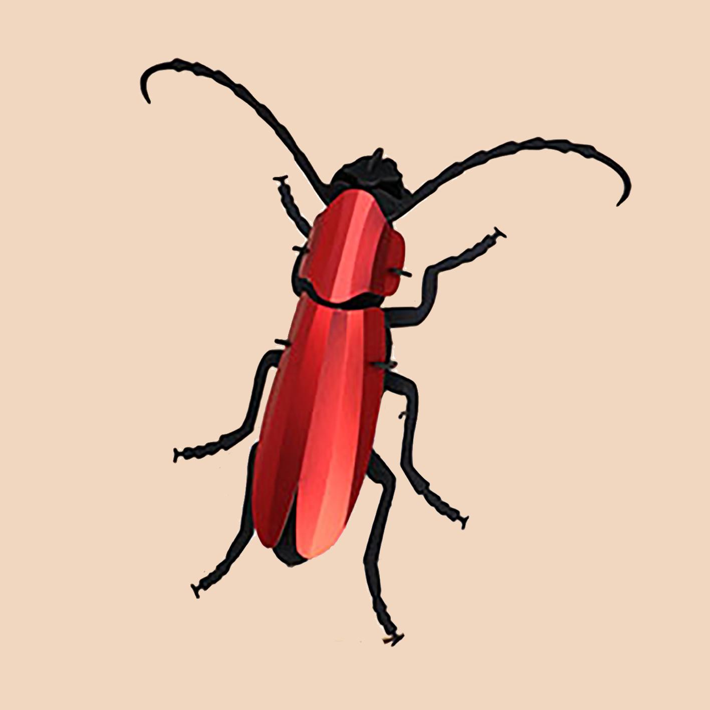 Rosalia kever van rood papier om te knutselen