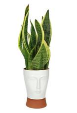 Design bloempot in de vorm van een hoofd