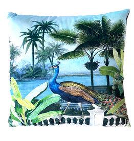 Cushion / Peacock