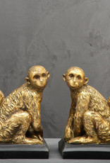 Gold monkey book ends