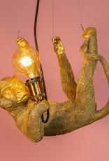 Gold hanging monkey lamp