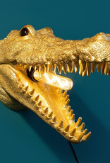 Gold crocodile animal trophy wall light