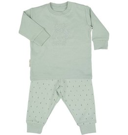 Frogs and Dogs mintgroene pyjama