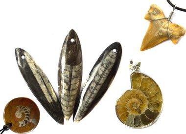 Fossilien Anhänger