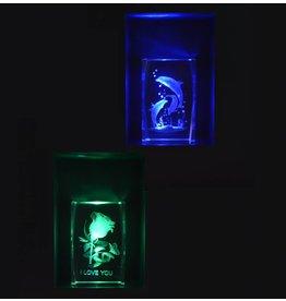 Glasbild 3D Lasergravur