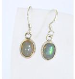 Opal Ohrhänger oval 925er Silber