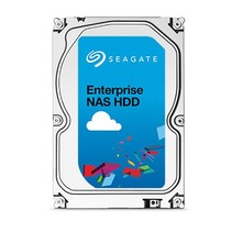 6TB SAS Enterprise (ST6000NM0095)