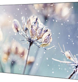 Samsung Displays Samsung VMR-U Video Wall 46 inch