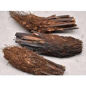 Boomvaren Stam 10-20cm