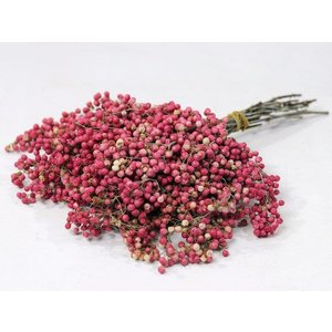 Pepperberries Roze 25-35cm