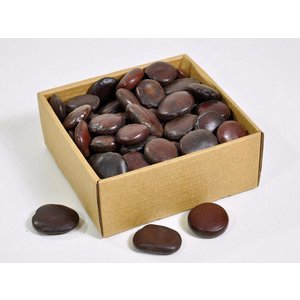 Pangra Beans 1.5kg