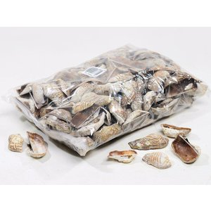 Schelpen Peanut 1kg