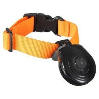 Dieren camera