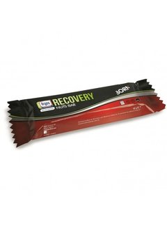 Born Born Recovery Nuts Bar (48 gram)