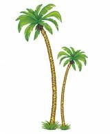 2 Palmbomen 1X180Cm  1X116Cm
