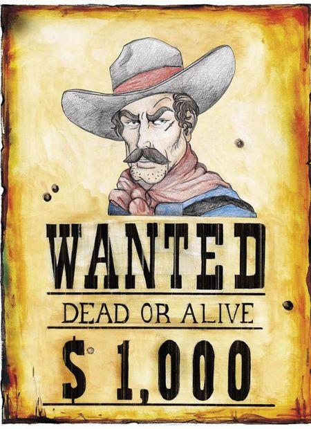 """Schild """"Wanted"""""""