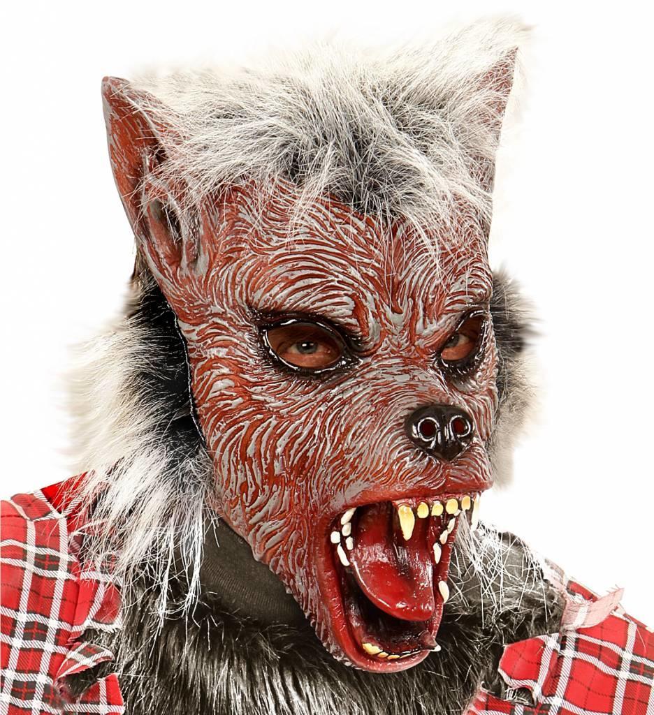 Masker Weerwolf Met Haar