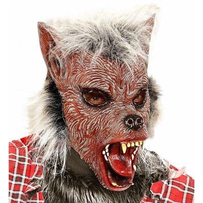 Kindermasker Weerwolf Met Haar