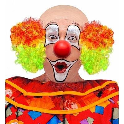 Kale Kop Clown Met Meerkleurig Haar