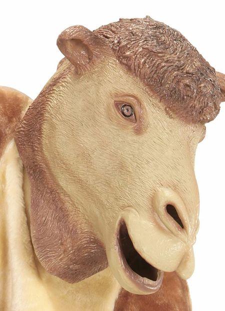 Masker, kameel