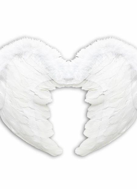 Veren vleugels 37x50xm, wit