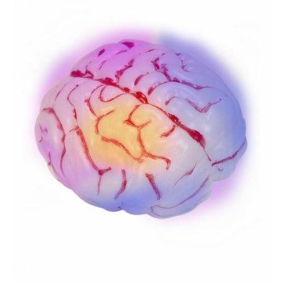 Oplichtende Hersenen