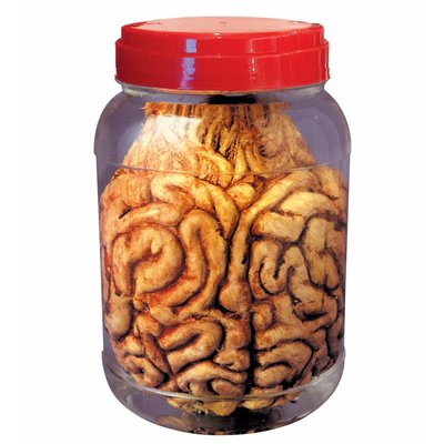Laboratorium Pot Met Hersenen