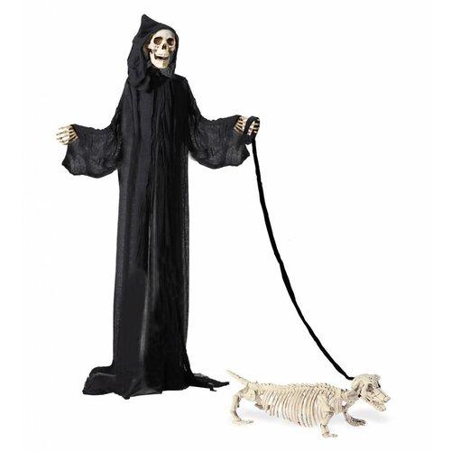 Skelet Tekkel Met Riem