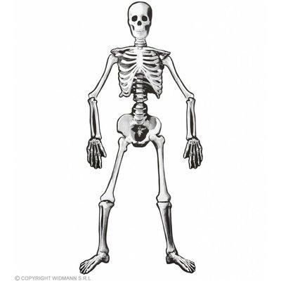 Skelet 134Cm