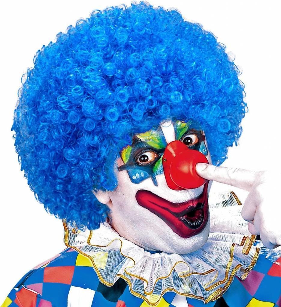 Clownpruik Krullen Licht Blauw