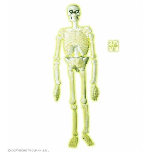 3D Plastic Laboratorium Skelet 150Cm