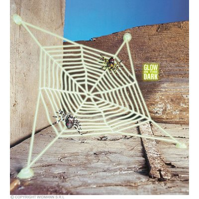 Spinneweb Met 2 Spinnen Lichtgevend In Donker