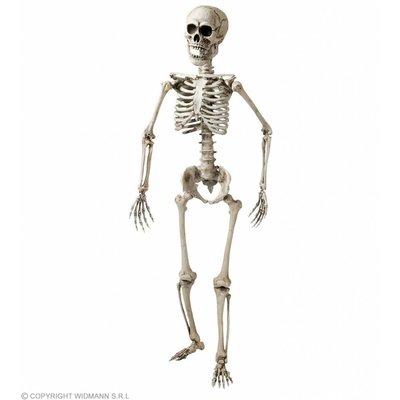 Skelet Luxe Uitvoering 160Cm