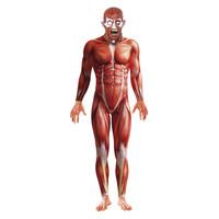 Smiffys Anatomie Man Kostuum - Rood